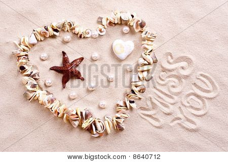 Seashells In Sand