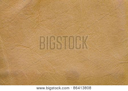Closeup leather background