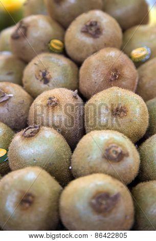 Kiwi On The Market