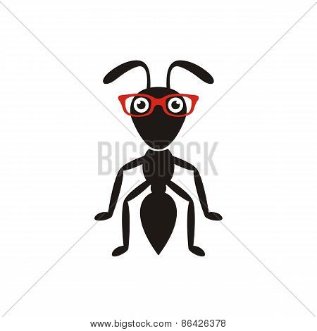 Black Ant With Glasses