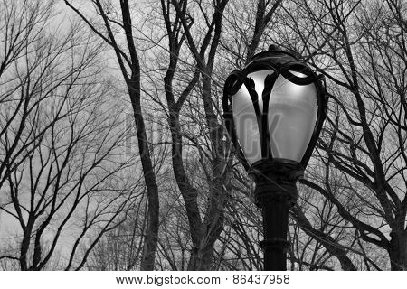 Lamppost in Central Park