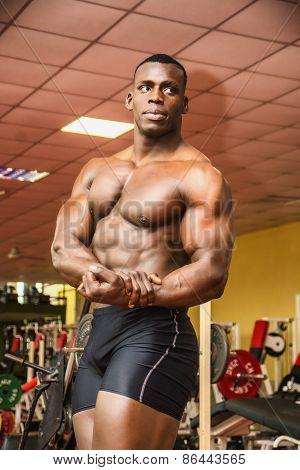 Handsome Black Male Bodybuilder Posing In Gym