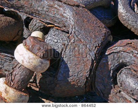 rusted steel shank