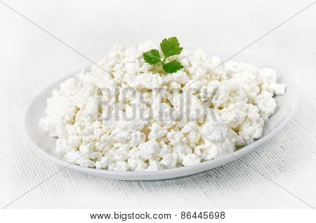 Curd Cheese On White Plate