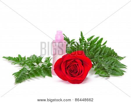 Perfume Bottle With Natural Red Rose And Fern Leaves