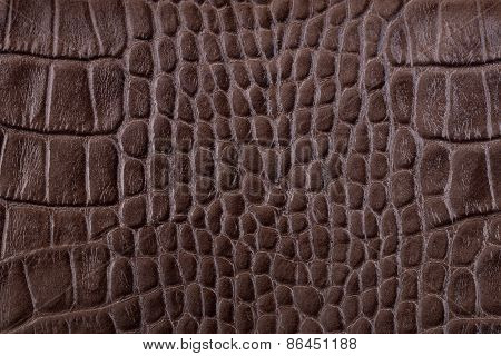 Brown Alligator Leather Details Background