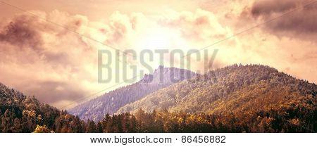 Nature Conceptual Image.