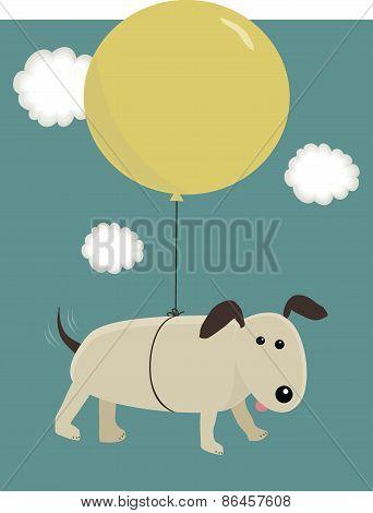 Balloon Hound
