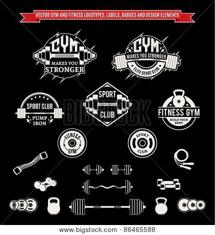 Set of Vector Gym and Fitness Labels, Badges and Design Elements