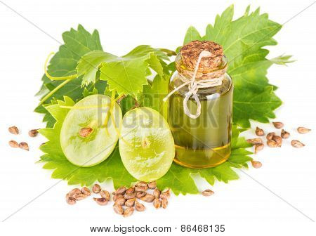 Products For Grape Seed Oil
