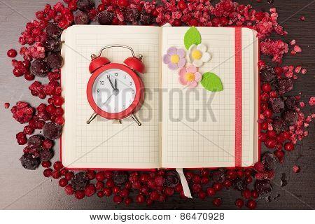 Berries Time