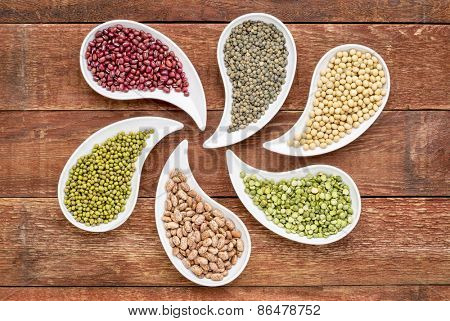 variety of beans, lentils, soy and pea in teardrop shaped bowls against rustic wood