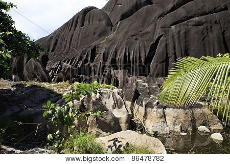 Enormous black granite rocks in the thickets of tropical vegetation.