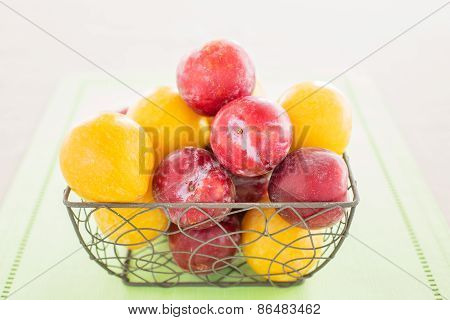 Group Of Yellow And Red Or Purple Plums In Small Rustic Basket