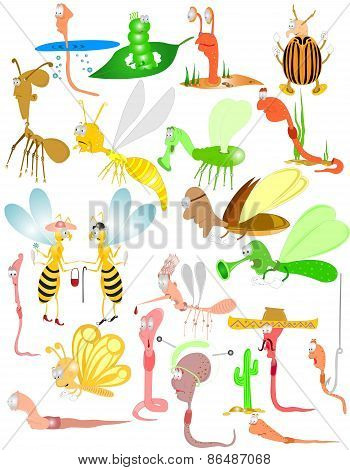bugs insect beetles worm characters