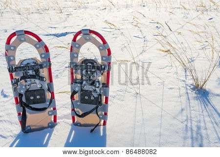 A Pair Of Snowshoes In Snow Field