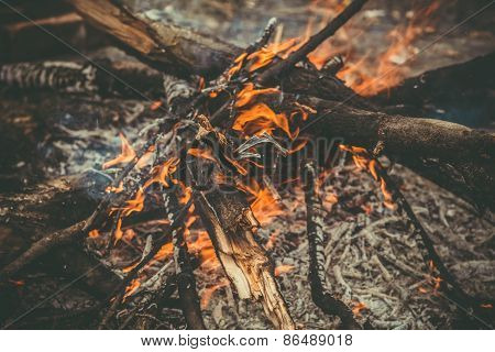 Fire Flame wooden camp burning Outdoor travel