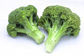image of cruciferous  - Fresh broccoli on white with soft shadow - JPG