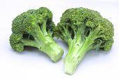 stock photo of cruciferous  - Fresh broccoli on white with soft shadow - JPG