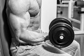picture of dumbbell  - Strong and muscular guy with dumbbell - JPG