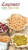 picture of soya beans  - chick - JPG