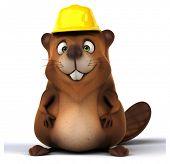 picture of beaver  - Fun beaver - JPG