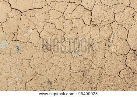Dry Cracked Land