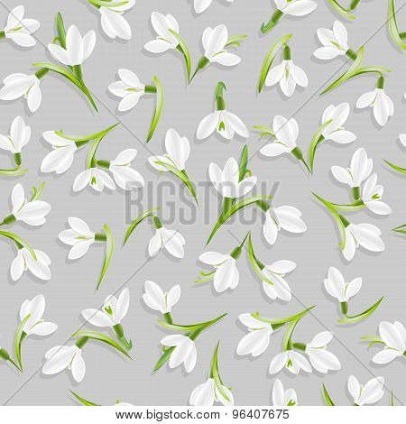 Vector seamless pattern with snowdrop flowers
