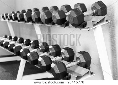 Sports Dumbbells, Weight Training Equipment