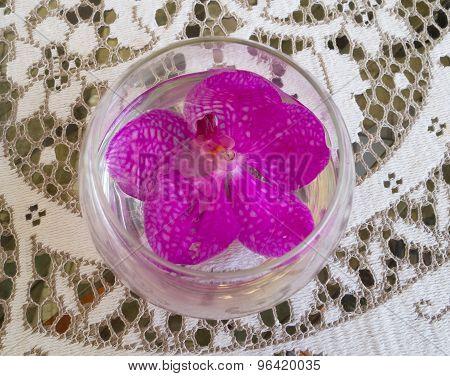 Pink Orchids Decoratation