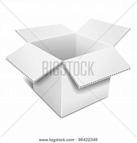 Open White Cardboard Box