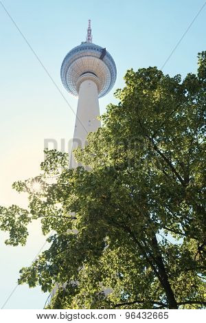 BERLIN, GERMANY - JULY 07: Low angle shot of TV tower in Alexanderplatz, with tree branches in the foreground. July 07, 2015 in Berlin.