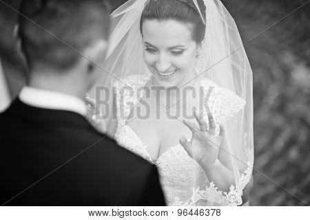 Cute Bride Looking From Veil