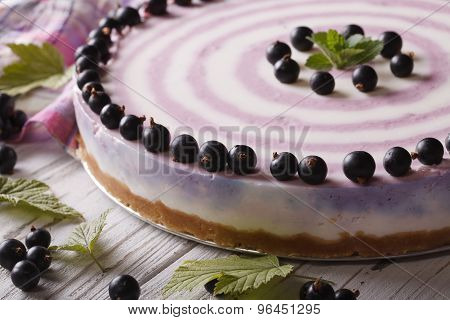 Delicious Striped Currant Cheesecake Close-up Horizontal