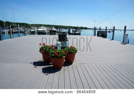 Geraniums on the Dock