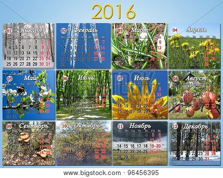 Calendar For 2016 in Russian With Twelve Photo Of Nature and month in Russian