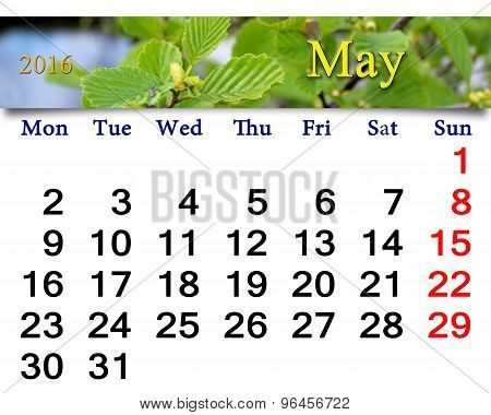 Calendar For May 2016 With Alder Leaves