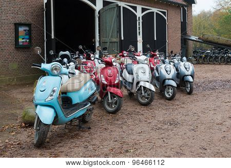 Scooter Rental Company