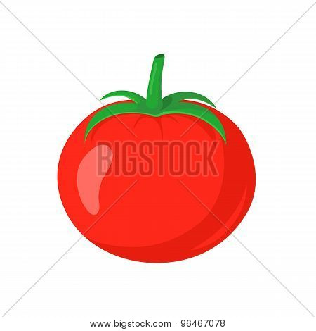 Red tomato vegetable.