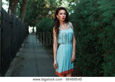 Pretty Woman In A Dress With Earrings Near The Green Bush.