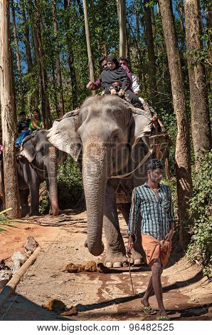 Elephant Arrival Spot. Tourists Ride An Elephant