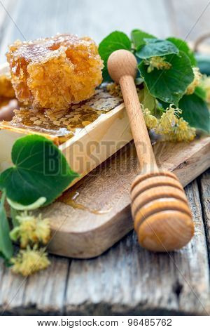Flowers Of Lime And Honey In The Comb.