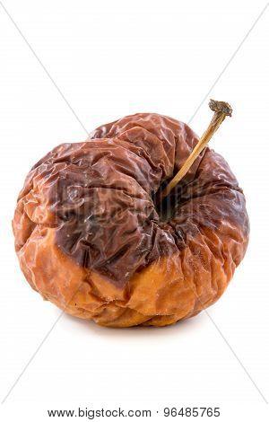 Wrinkled Rotten Apple.