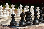 picture of chess pieces  - Garden chess set to play - JPG