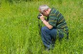image of enthusiastic  - Enthusiastic mature photographer taking a photo of Common Blue butterfly - JPG
