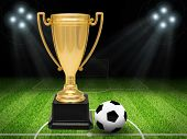 pic of soffit  - Gold cup football on football pitch on nature background with soffits - JPG