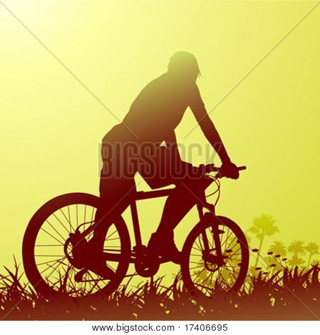 bicycle with nature scene