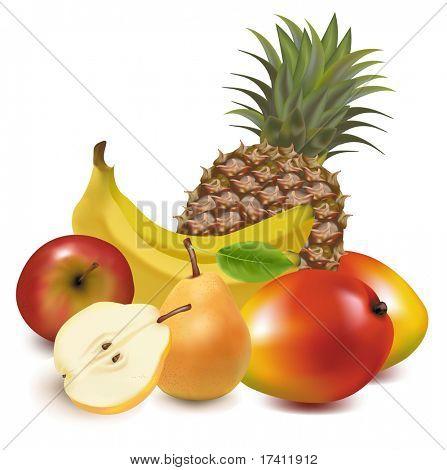 Ilustración de vector fotorrealistas. Gran grupo de frutas exóticas.