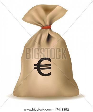 Money bag with euro. Vector.