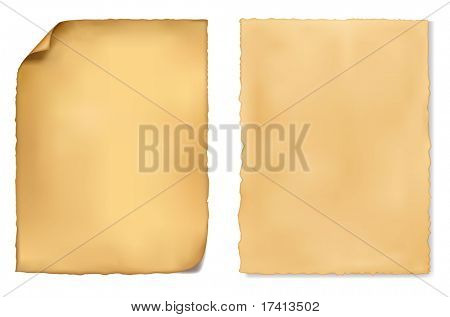 Set of old worn papers. Vector